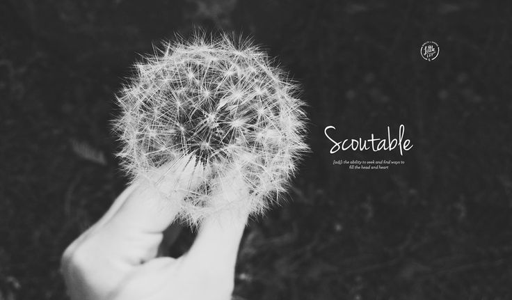 Little Lot | Lifestyle Blog from Scoutable