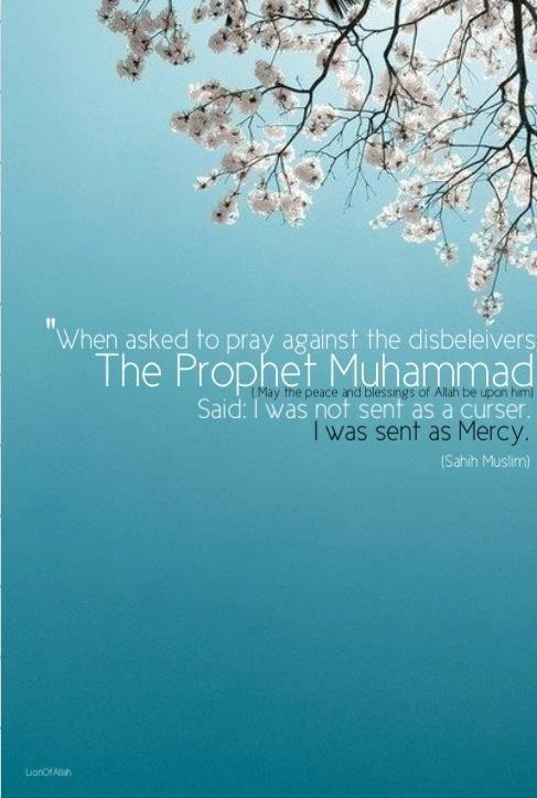 Wow Prophet Muhammad's words.