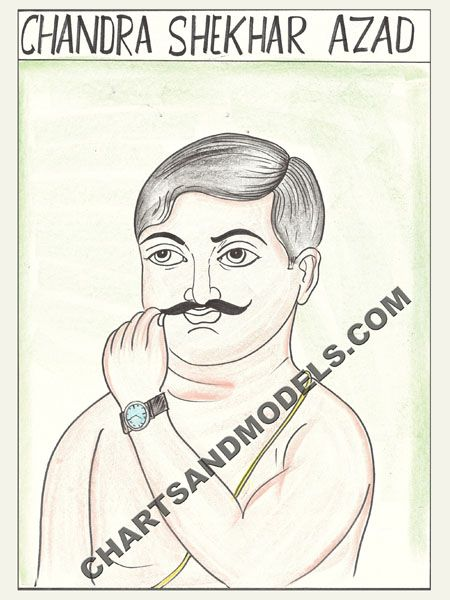 Buy Chandra Shekhar Azad Charts Online In Delhi Buy simple, colorful, inexpensive Chandra Shekhar Azad Charts Online available at Online Charts And Models.