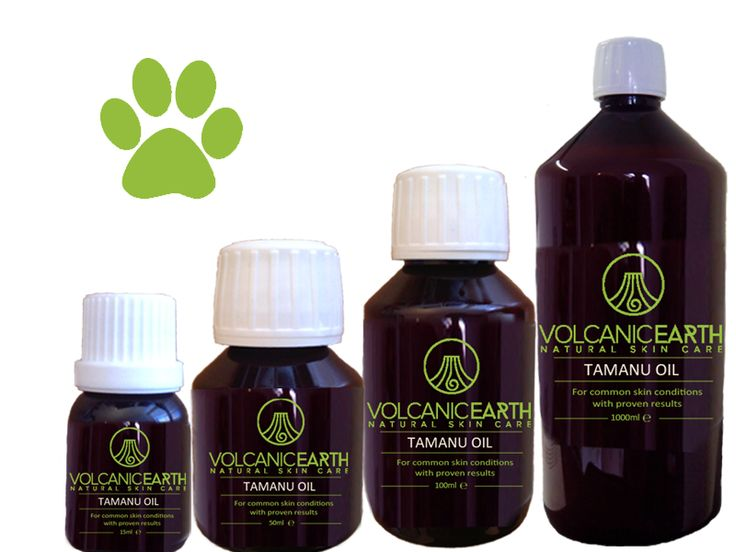 Animals, like people can suffer from rheumatism, wounds, scars, pulled muscles, sprains or general inflammation, Applying pure Tamanu Oil™ can help relieve the symptoms. Itching behind the ears, chest, abdomen, legs can be a kind of allergy in dogs and cats whereby a wound or inflammation can occur rapidly, Pure Tamanu Oil™ may contribute by its antibacterial and antiviral properties to recovery.