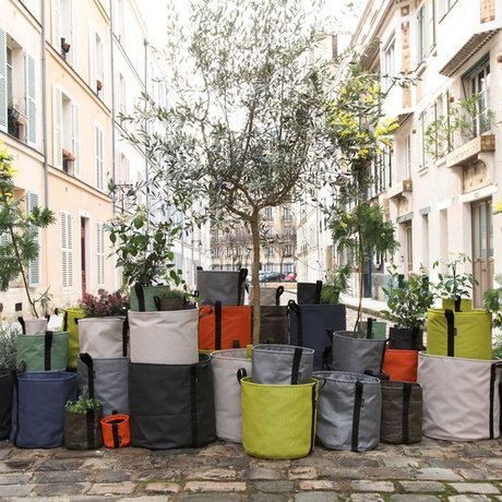 Bacsac // Lightweight, Flexible Plant Bags // Born out of the frustration of using traditional planters, which are often immobile, heavy, and expensive, designer Godefroy de Virieu worked with landscapers Virgile Desurmont and Louis de Fleurieu to create these cutting-edge plant bags. #productdesign