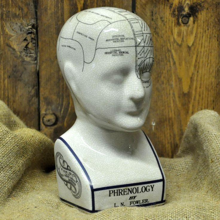 12 inch Ceramic Phrenology Head
