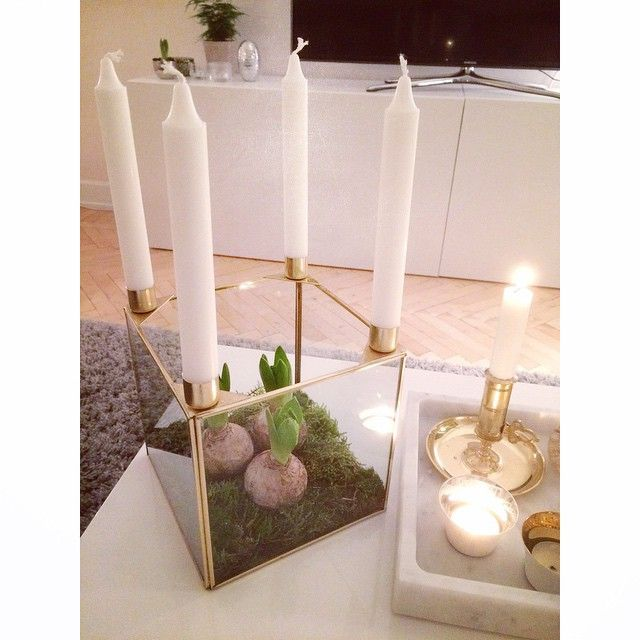 Årets adventsljusstake är inköpt och redo! Dock får det första ljuset vänta med att tändas... Och ikväll planteras det hyacinter hejvilt och första julmusiken strömmar ut genom högtalarna. Det gäller ju att passa på & njuta!✨ Hoppas ni alla har en fin kväll!
