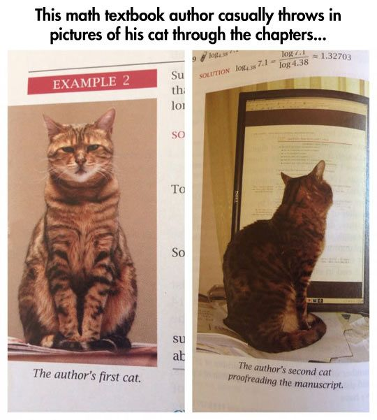 The best math textbook ever!--This math textbook author casually throws in pictures of his at through the chapters.
