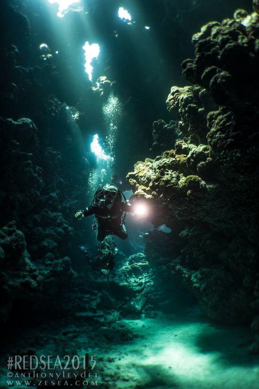 Shaab Claudio in Red Sea #diving #redsea #plongée #Egypt #light #reef #coral #underwater