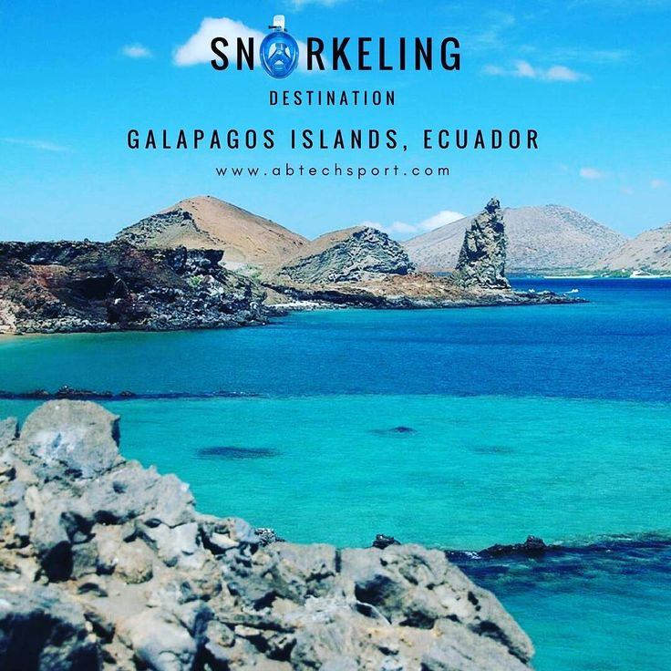 #SNORKELING #DESTINATION: #GALAPAGOS #ISLAND, #ECUADOR    The Galápagos Islands is a #volcanic #archipelago in the #Pacific #Ocean. It's considered one of the world's foremost destinations for wildlife-viewing, including snorkeling.    #snorkel #spot #world #wildlife #views #vacation #adventure #time ##maui #hawaii #sandiego #california #miamibeach #florida #usstates #snorkeling