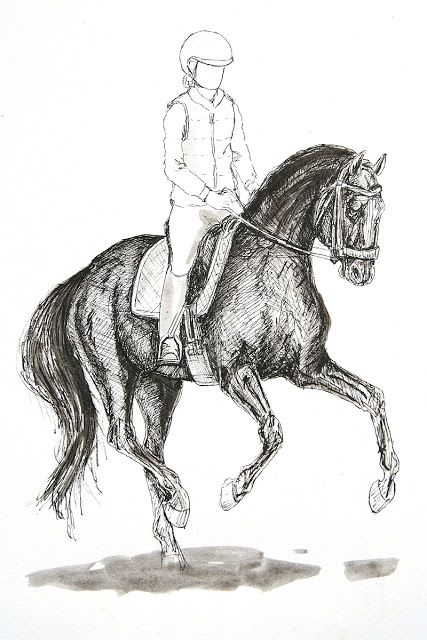 MZ - horse art: Dressage V