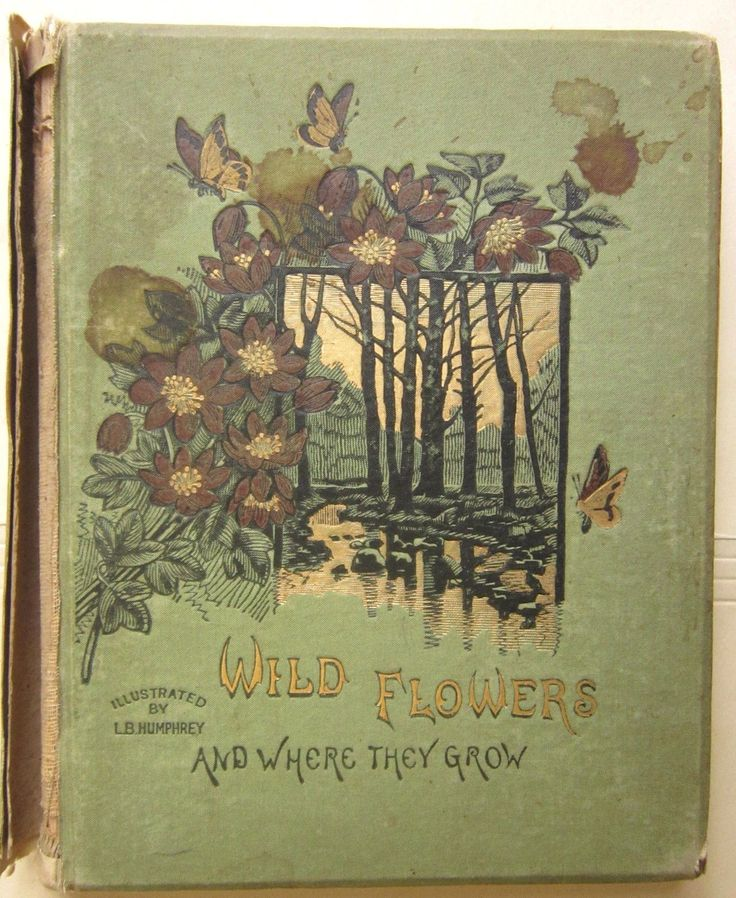 Wild flowers and where they grow. Illustrated by L. B. Humphrey. 1882.