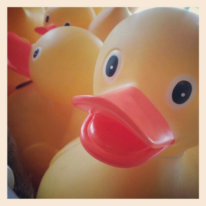 Rubber ducky you're the one, who makes bath time so much fun!!