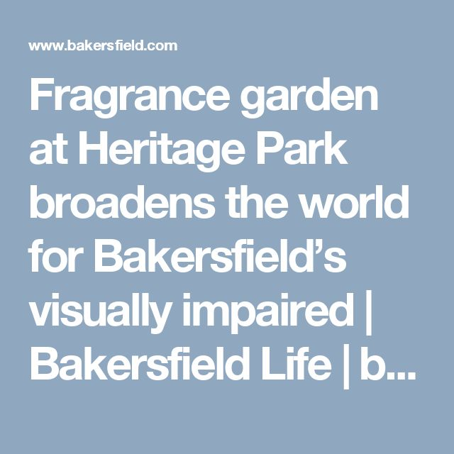 Fragrance garden at Heritage Park broadens the world for Bakersfield's visually impaired | Bakersfield Life | bakersfield.com