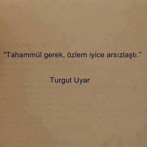 #şiir #turgutuyar #tu (Şiir içimizde!)