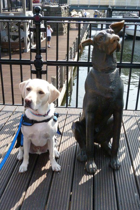 Tom - having a break from working - next to a new friend - Cardiff Bay