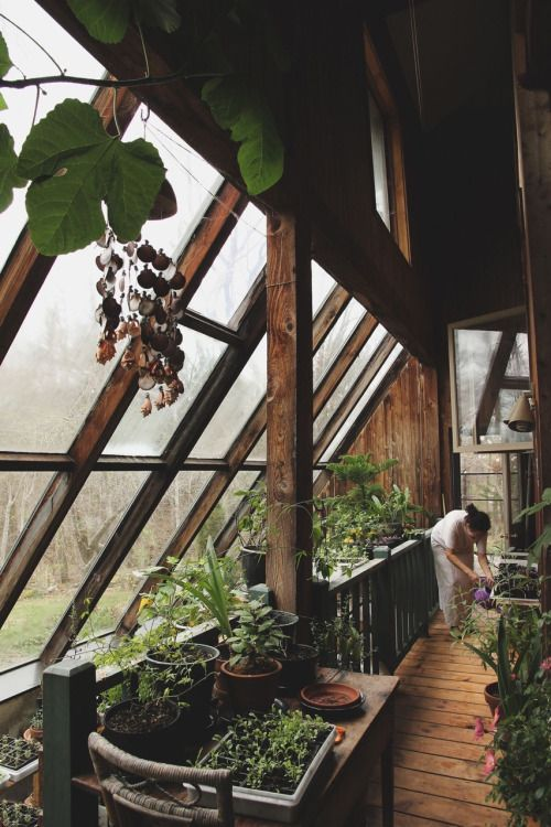 I would LOVE to have an indoor greenhouse attached to our home