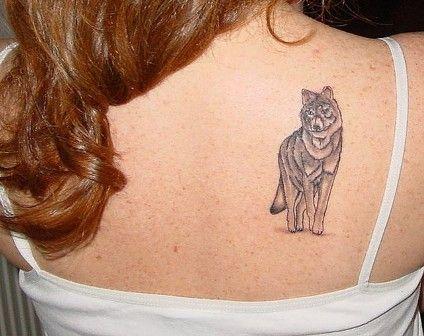awesome wolf tattoos, beautiful wolf tattoos, featured, latest wolf tattoo designs, wolf tattoo designs, wolf tattoos