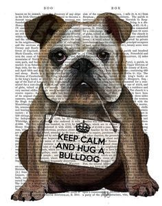 "My favorite ""keep calm"" ever... squish a bulldog"