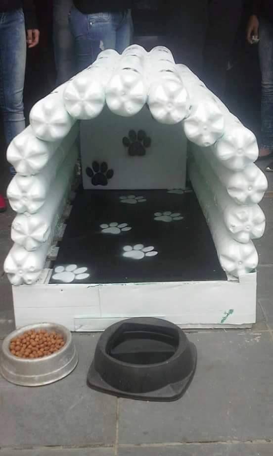pandora_Casita perruna con botellas de PET. | Casitas para perros recicladas, Casas para perro ...