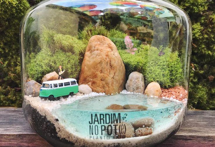 """1,689 curtidas, 70 comentários - Jardim no Pote® (@jardimnopote) no Instagram: """"Vai ter Jardim no Pote com serenata de amor na praia SIM!! ❤ Acabamos de abastecer a loja! Tem…"""""""