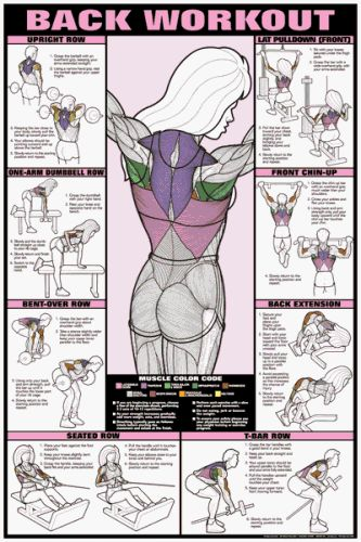 Back Workout Fitness Chart designed specifically for women. #health #exercise #workout