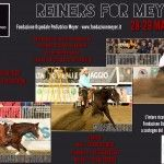 Reiners for Meyer