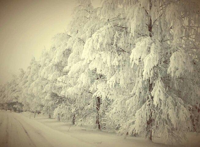 Winter in Norway. ©Ann-Jorunn Aune. Photography.