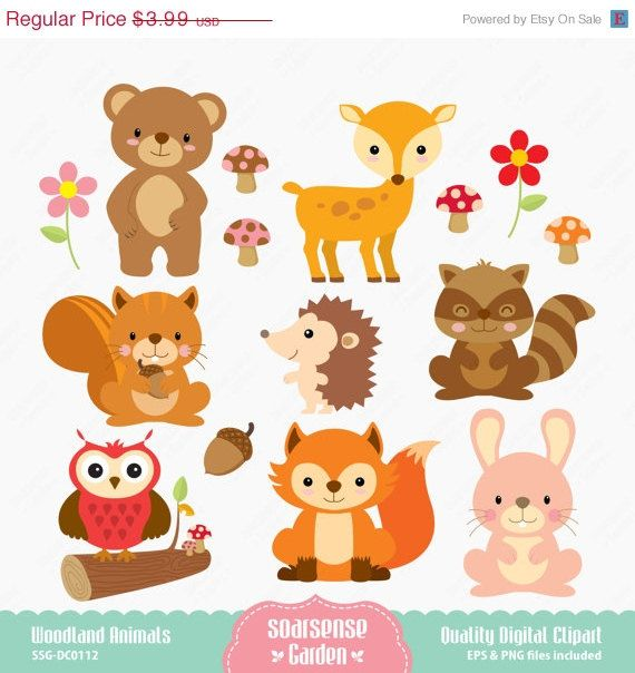 40 OFF SALE Woodland Animals Digital Clipart by SSGARDEN on Etsy, $2.39