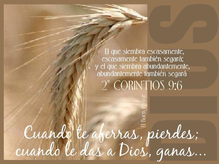 2 Corintios 9:6 Pero esto digo: El que siembra escasamente, también segará escasamente; y el que siembra generosamente, generosamente también segará.♔