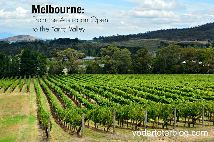 Melbourne with kids- the Australian Open, Yarra Valley, and more. Plus tips for getting there and where to stay!