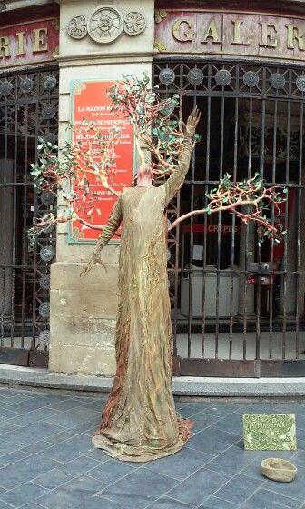 L homme arbre, bordeaux