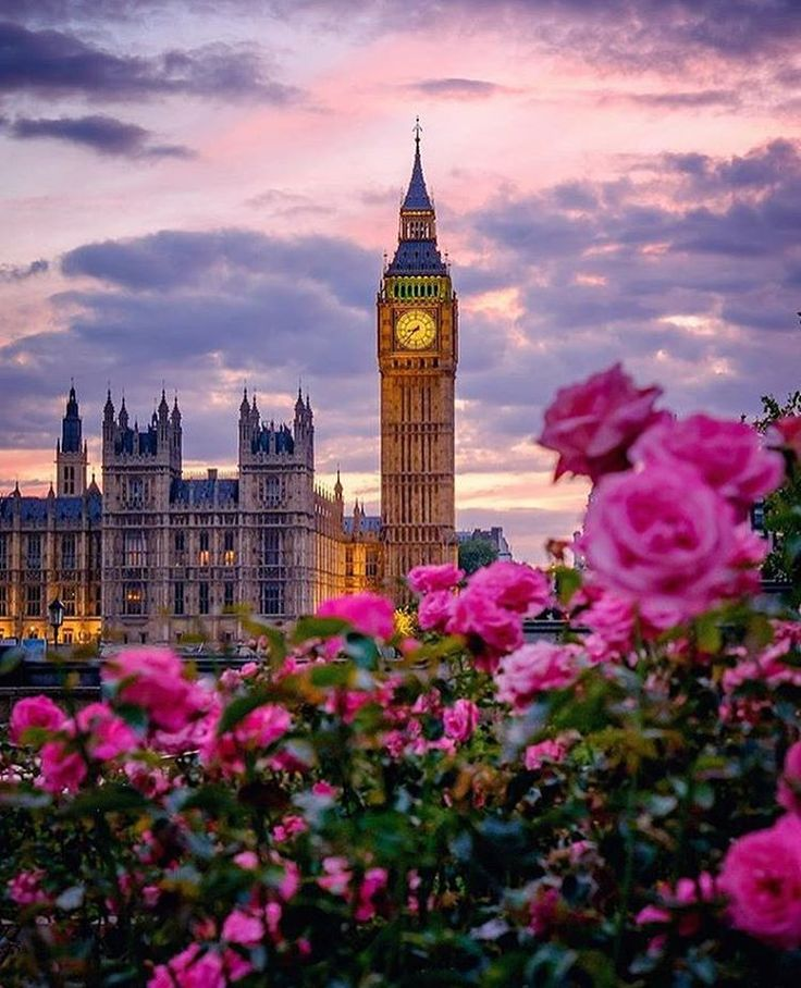 Big Ben looks so beautiful on a summers evening in London