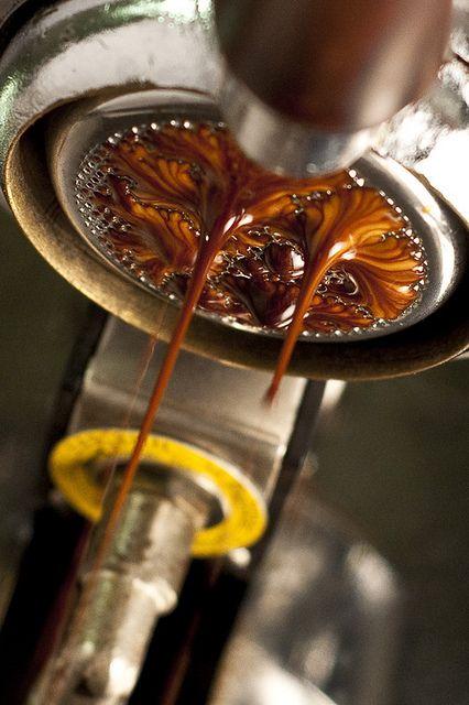 Creamy espresso goodness. Pulling the perfect shot