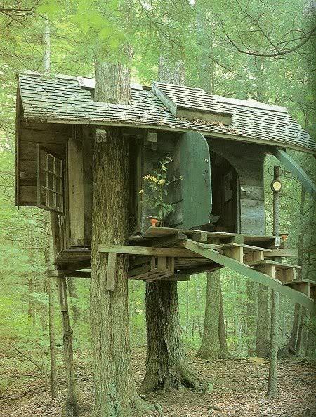 Fun tree house!