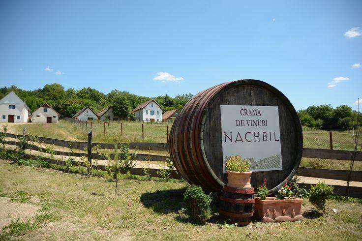 Nachbil winery http://winesylvania.com/events/2015/9/10/carastelec-winery