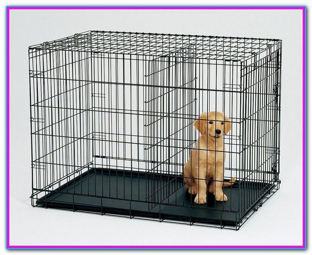 Dog Cage With Divider For Sale Large Dog Crate Dog Cages Dog Crate