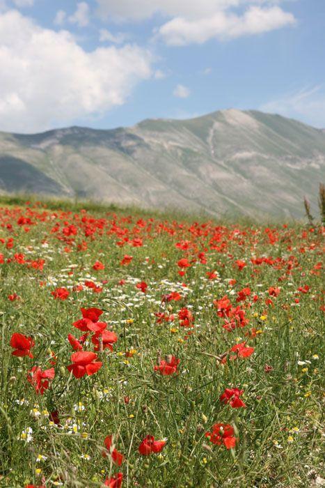 Sibillini Mountain in Umbria Italy