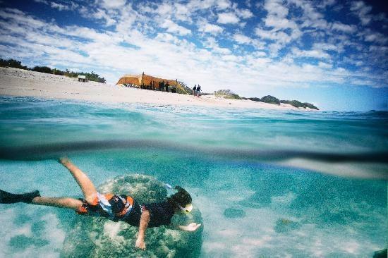 Sal Salis Ningaloo Reef: Ningaloo Snorkelling #Australia http://www.tripadvisor.com.au/ShowForum-g255101-i530-Western_Australia.html