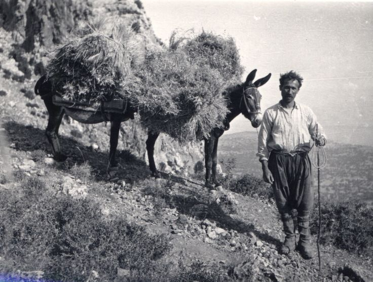 1950s Cyprus Peloponnesian Folklore Foundation Photographic Archive, Nafplion