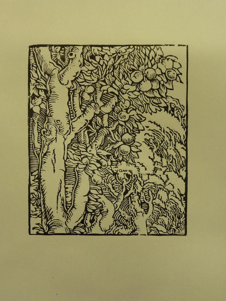 Dřevořez, volná kopie