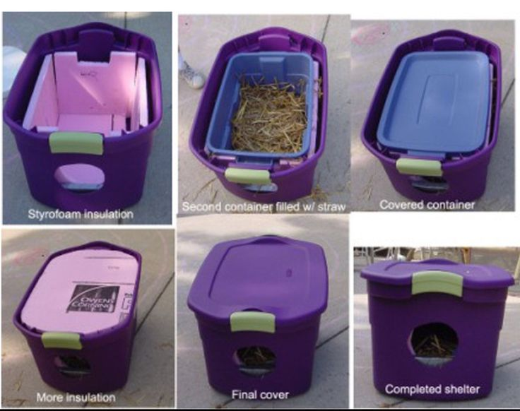 If you have an outside cat or have seen some strays hanging around, creating an insulated house is an easy and kind way to provide them with a safe place when the cold weather starts.