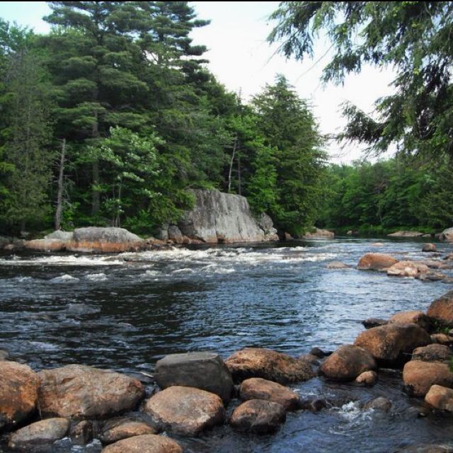 Moose River // Adirondack Mountains // New York