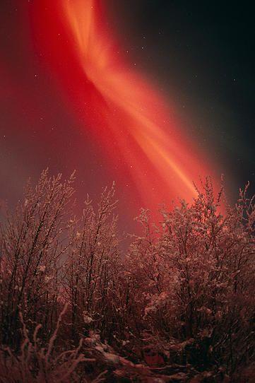 Crimson Corona by Dave Parkhurst 1981