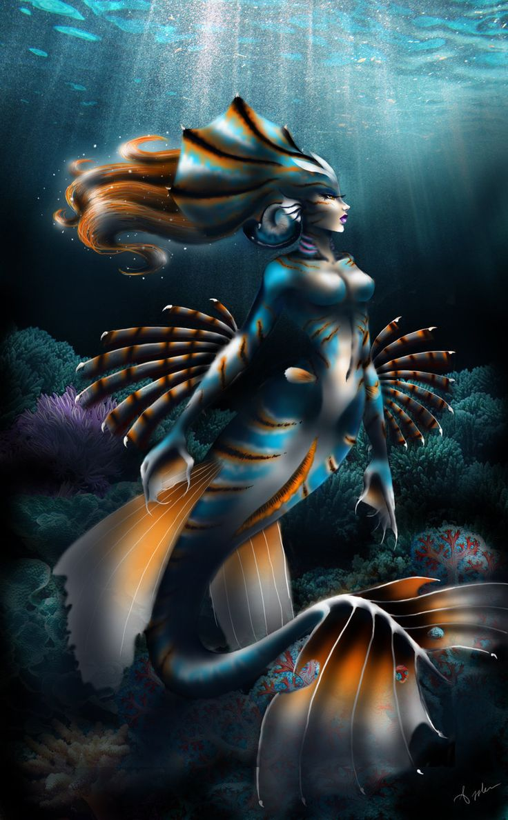 304 best mer folk images on pinterest cool stuff draw and drawings