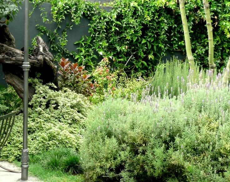 Un rinc n de mi jard n jardines patios y terrazas - Un jardin para mi ...