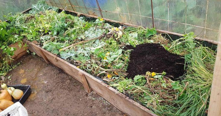 Materiales que puedes usar para acolchar la tierra de tu huerta (y   información)