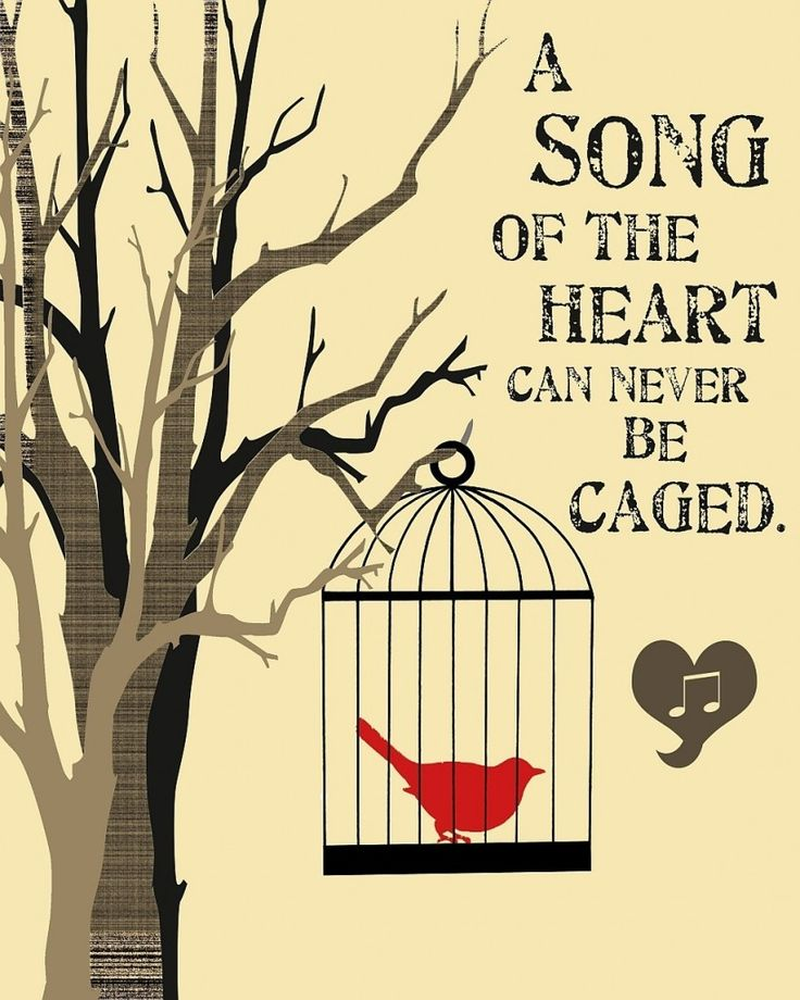 27 best images about Why the Caged Bird Sings on Pinterest ...