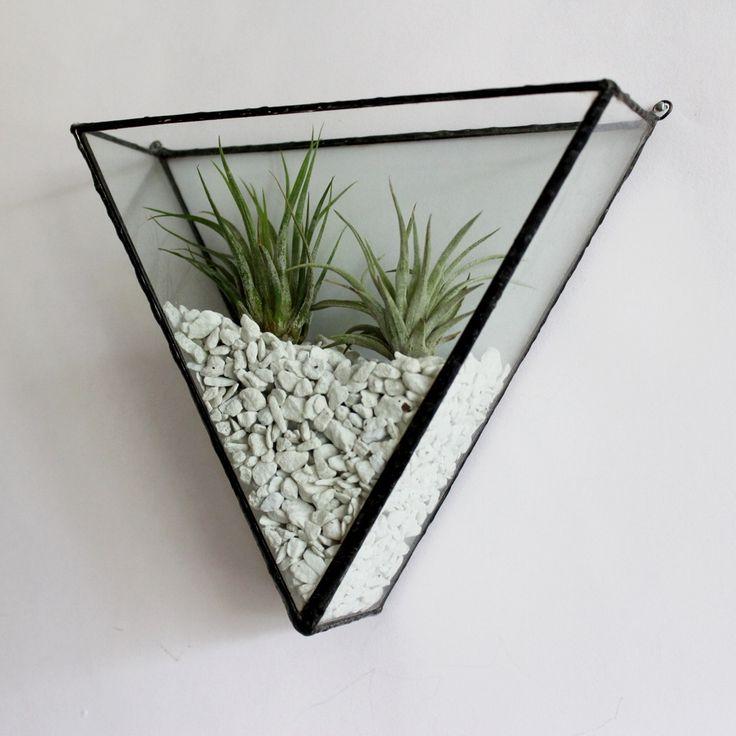 Pappus square glass plant geometric terrarium