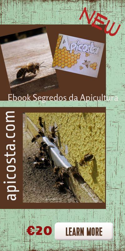 ebook com os Segredos da apicultura Natural, como começar, o que se deve ter e o que é indispensavel. apicosta.com