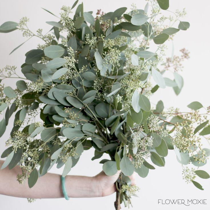 Seeded Eucalyptus Diy Wedding Greenery Popular Wedding Greenery Seeded Euc F Summer Weddin Diy Wedding Greenery Greenery Wedding Wedding Flower Packages