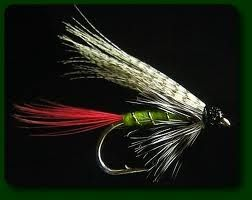 One such flies used for fishing is Wet Flies