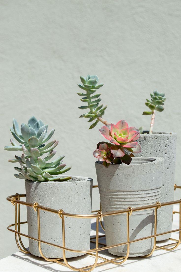 #concrete #concreteplanters #succulents
