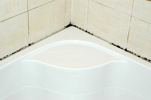 Можно очень долго и безрезультатно бороться с таким гадким явлением, как плесень в ванной. Но есть замечательное средство, которое поможет убрать грибок в два ...